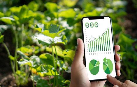 Raport GUS – Ochrona Środowiska